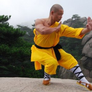 Physical and Mental Components of Martial Arts Training